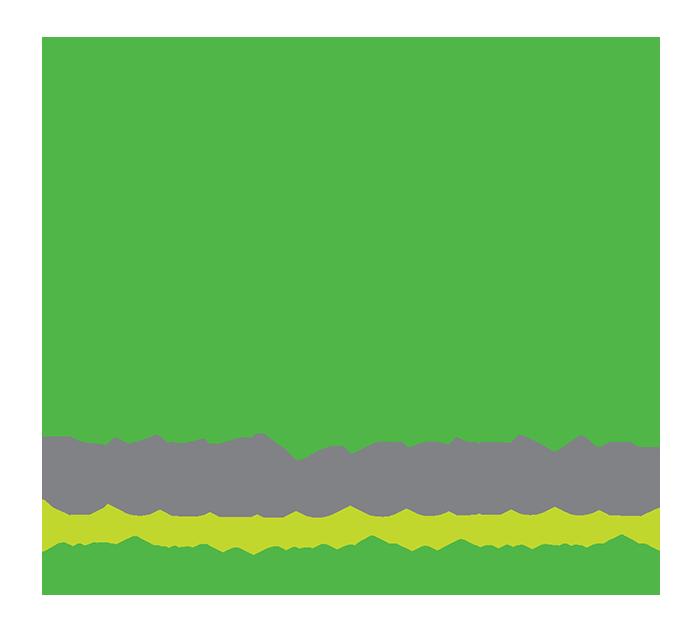 da Vinci Public School logo